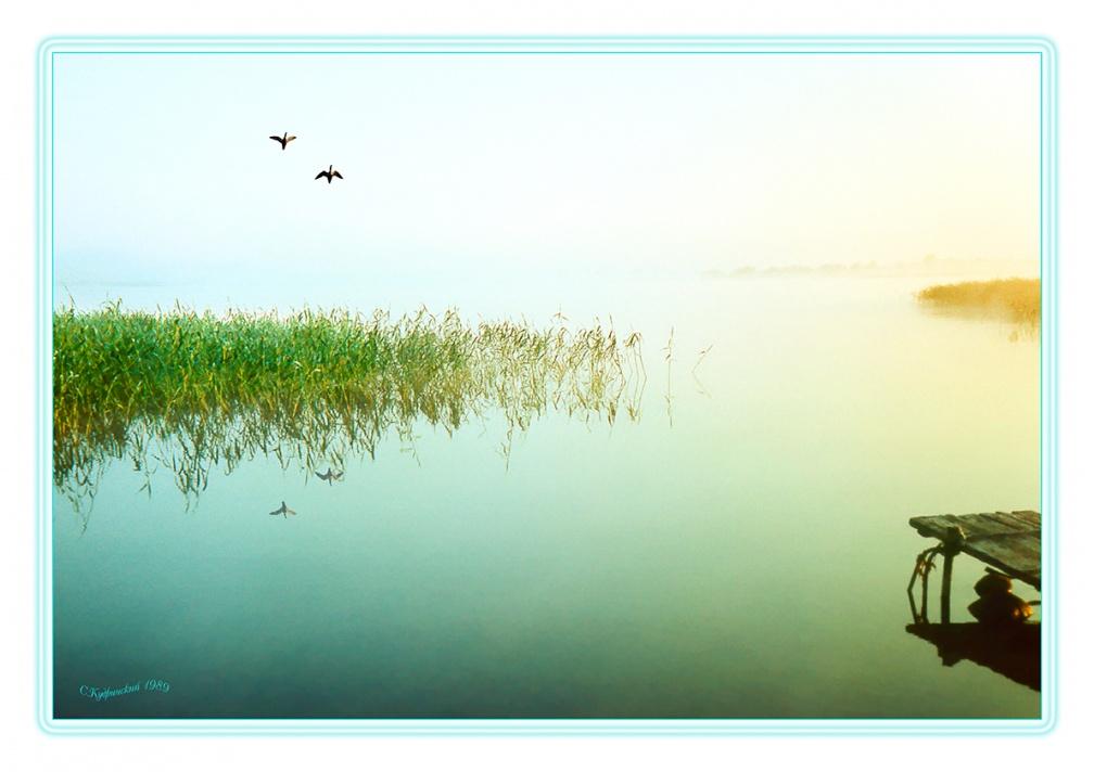 Вологодская природа фото картинки